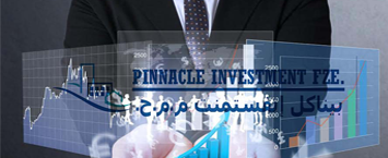Pinnacle Investment FZE